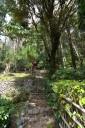 小径から小さな稲荷神社への参道